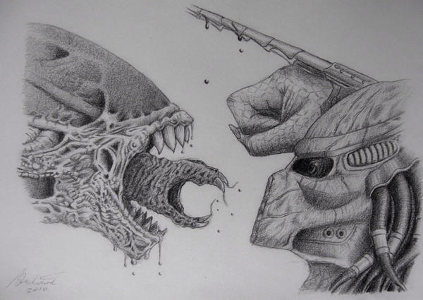 predator vs alian drawing 1 by cooldud111 on deviantart