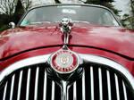 Red Jaguar detail 2