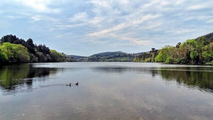 Castlewellan Forest Park - the Lake by UdoChristmann