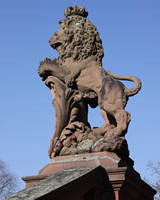 Lion by UdoChristmann