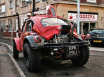 Muscle Beetle - rear view