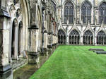 Cloister Canterbury UK 3