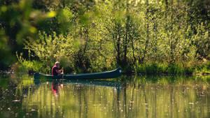 The canoeist