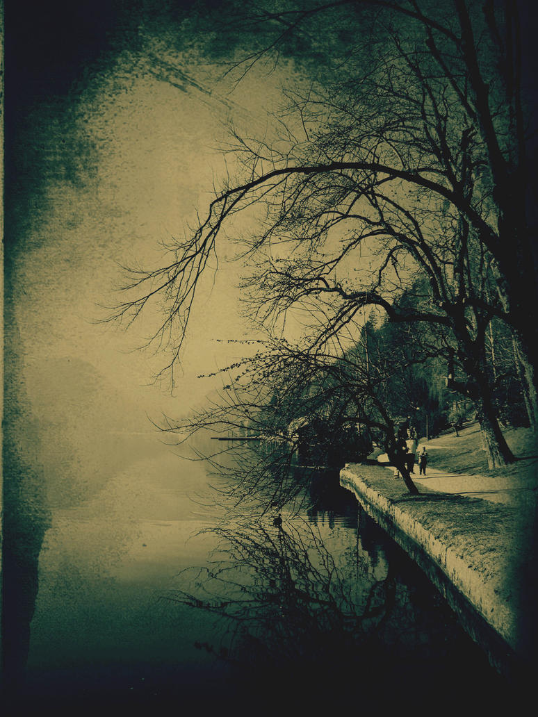 shingle by s0n-et-lumiere