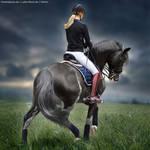 HEE Horse Avatar - The Darkling