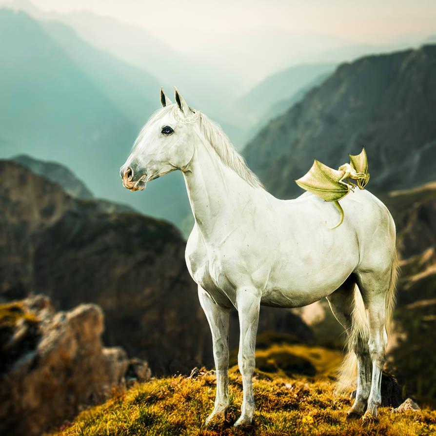 HEE Horse Avatar - Danearys