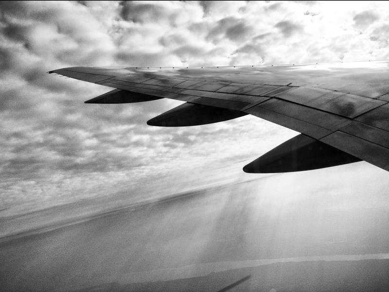 I'll Fly Away by ebontier