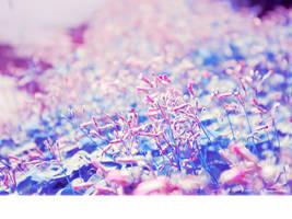 Summer Days in Bloom. by Cute-Sleepwalker