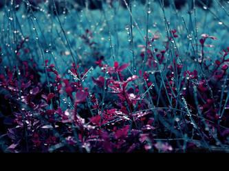 June 15:crying grass. by Cute-Sleepwalker