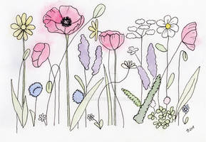 Botanical Doodle with Poppies