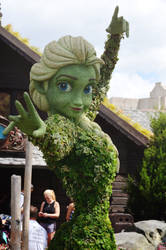 Epcot's Flower and Garden - Elsa