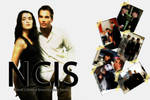 NCIS Wallpaper White