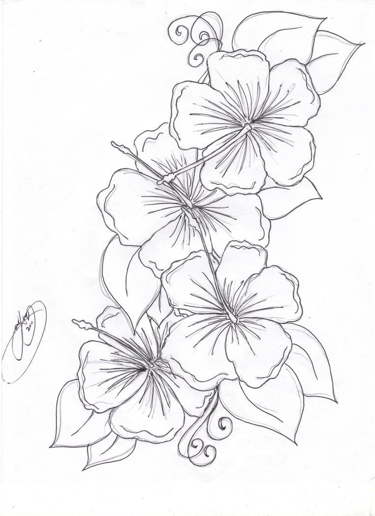 hibiscus flowers by Closet-Case-808 on DeviantArt