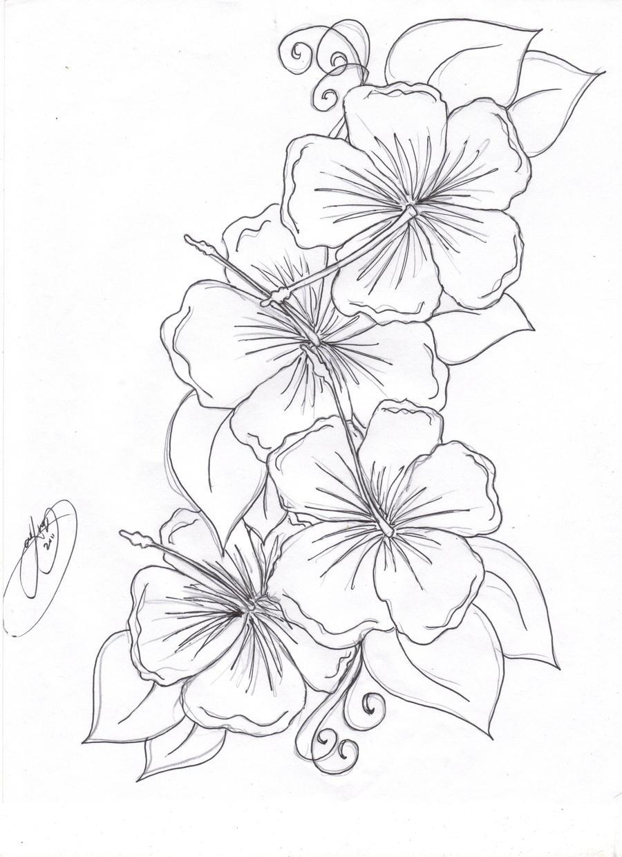 Hibiscus Flowers By Closet Case 808 On DeviantArt