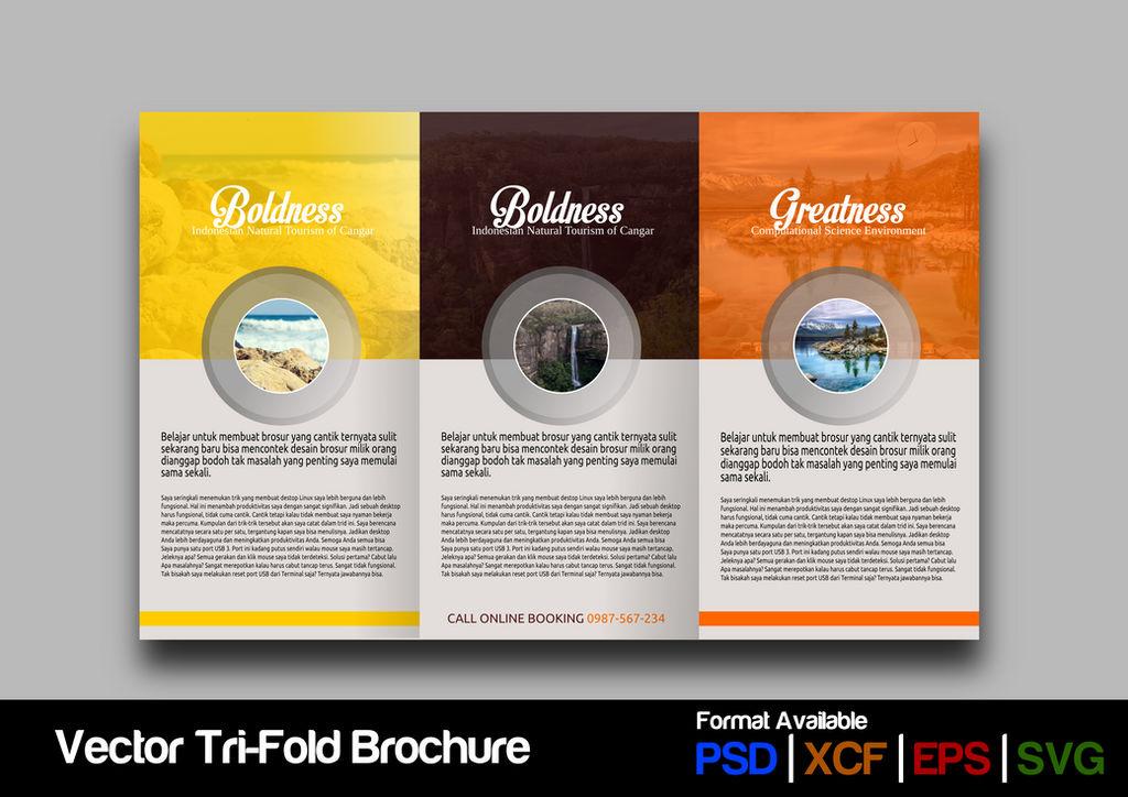 Trifold Brochure Concept #3
