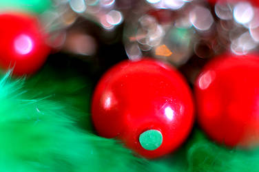 Taste of christmas by evinio
