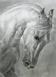 Horse3 by zaasgmn