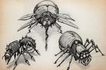 SKETCHBOOK - Bugs
