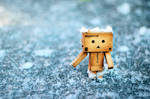 danbo on ice