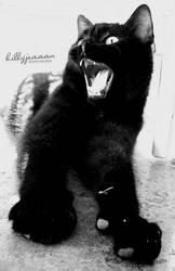 scream by billyjeaaan