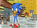 If Sonic Came In This Scene...