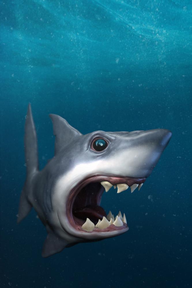 Shark web by ColdHandLuke