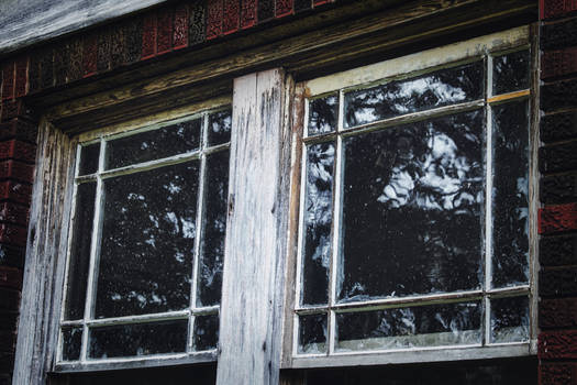 Wavy Windows