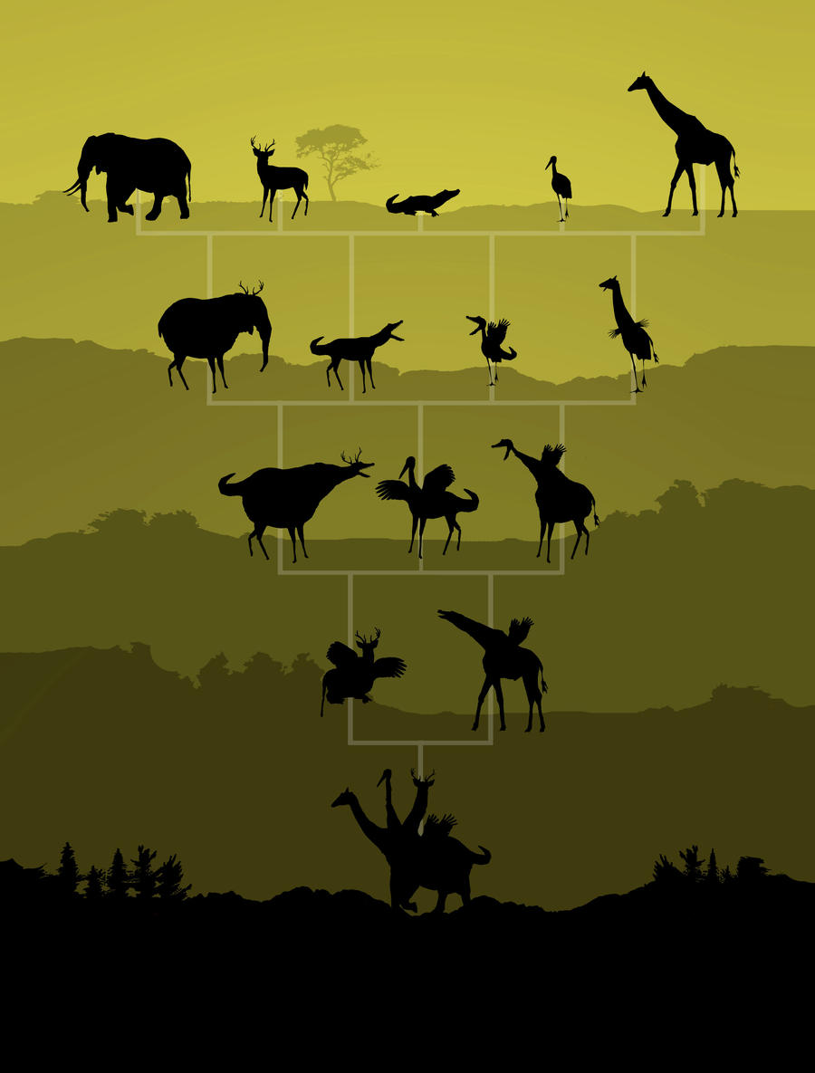evolution of animals - HD900×1185