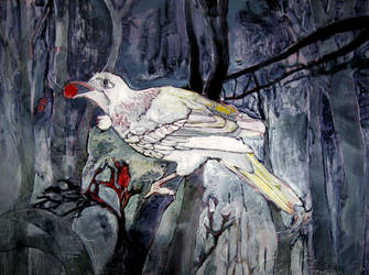 Bird at Night by eatcakedrinkblood
