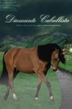 Diamante Caballista