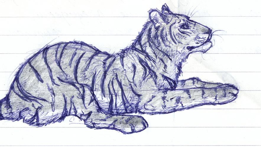 Tiger :3 by Kezzai