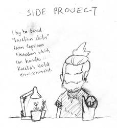 sideproject