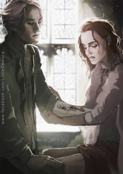 HP: Dramione - Death Eater's Mark
