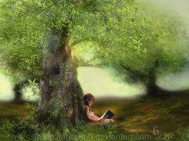 The Reader by SuliannH