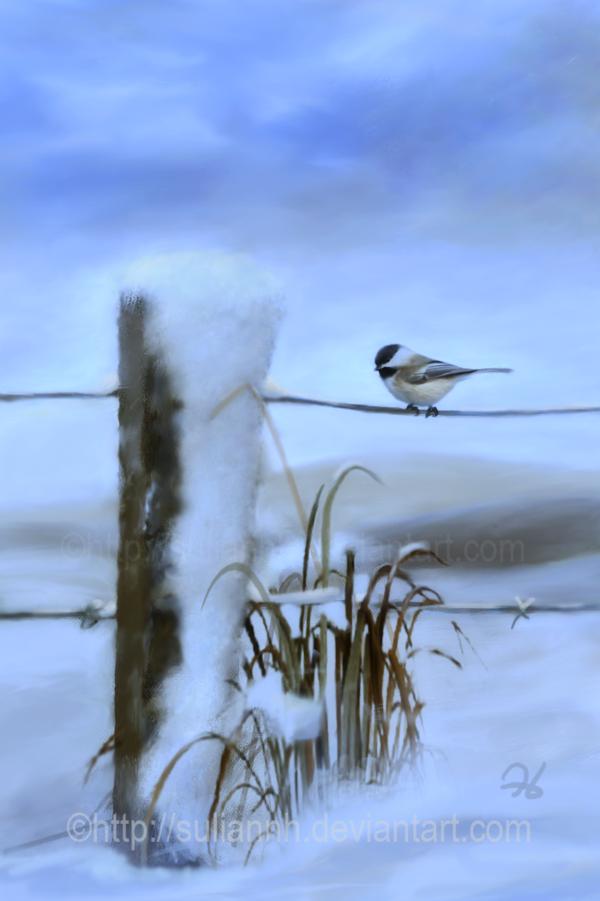 Winter Tales by SuliannH
