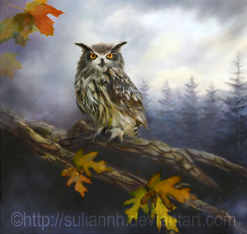 Forest Owl by SuliannH