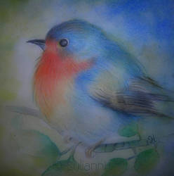 Baby Robin by SuliannH