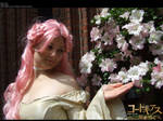 Code Geass: Flowers by wtfproductionsskits