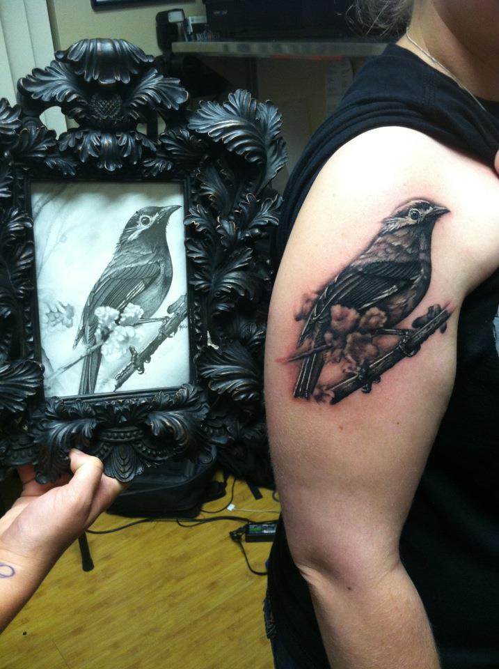 bird by sliceman424