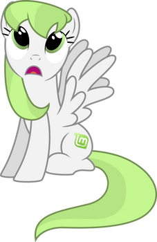 Linux Mint Pony 1