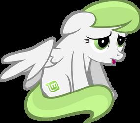 Linux Mint Pony 5
