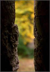 Autumn View by corvus2606