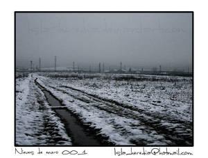 Nieves de enero_003