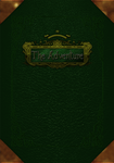 Book cover green - The Adventure v1