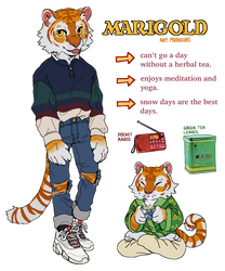 Marigold Reference by Luxjii