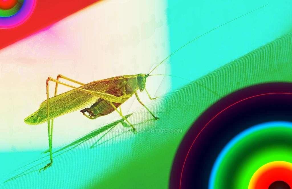 experimental grasshopper by bin-g0