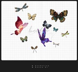 Pack Butterflies 11 Png