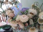 the flower dragon by tawneyeyes