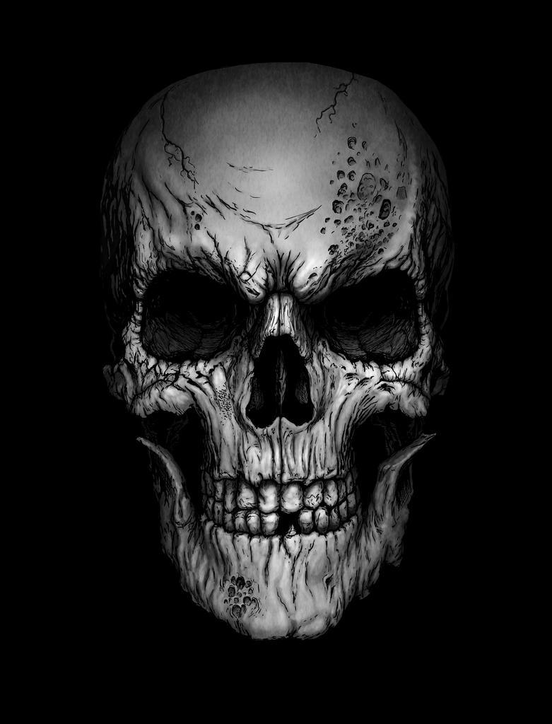 Skull by AndrewDobell