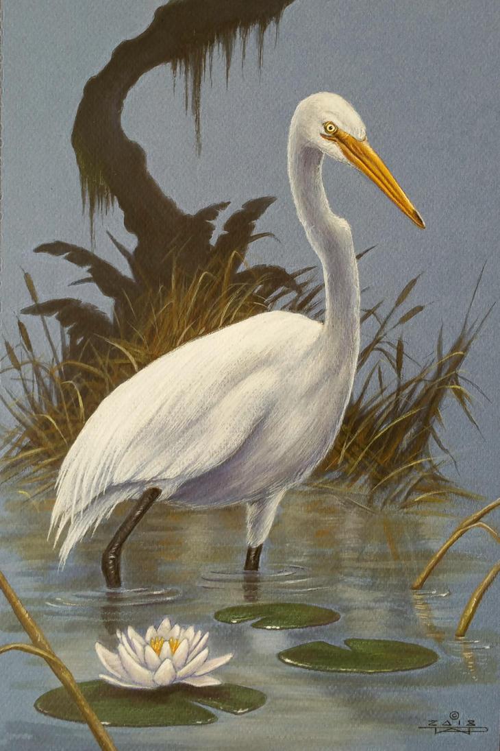 Egret by taplegion